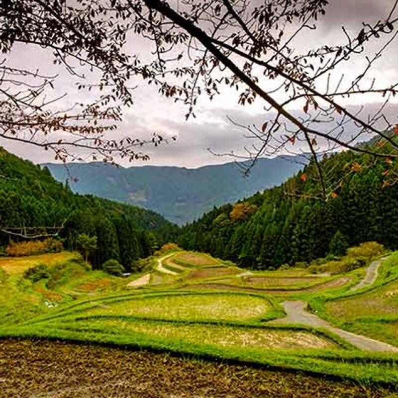 【減法時代】日本最不廢小鎮 德島上勝町的零廢棄革命